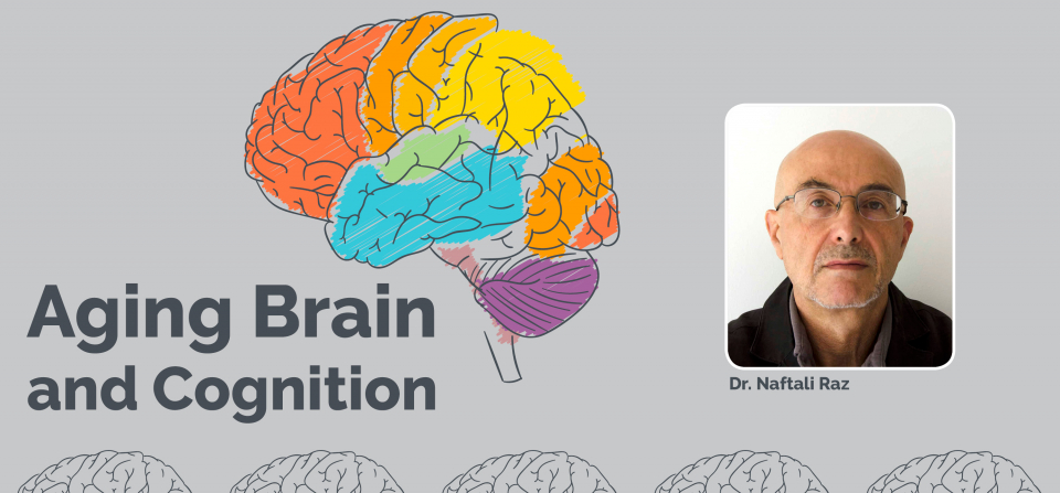 Aging Brain and Cognition